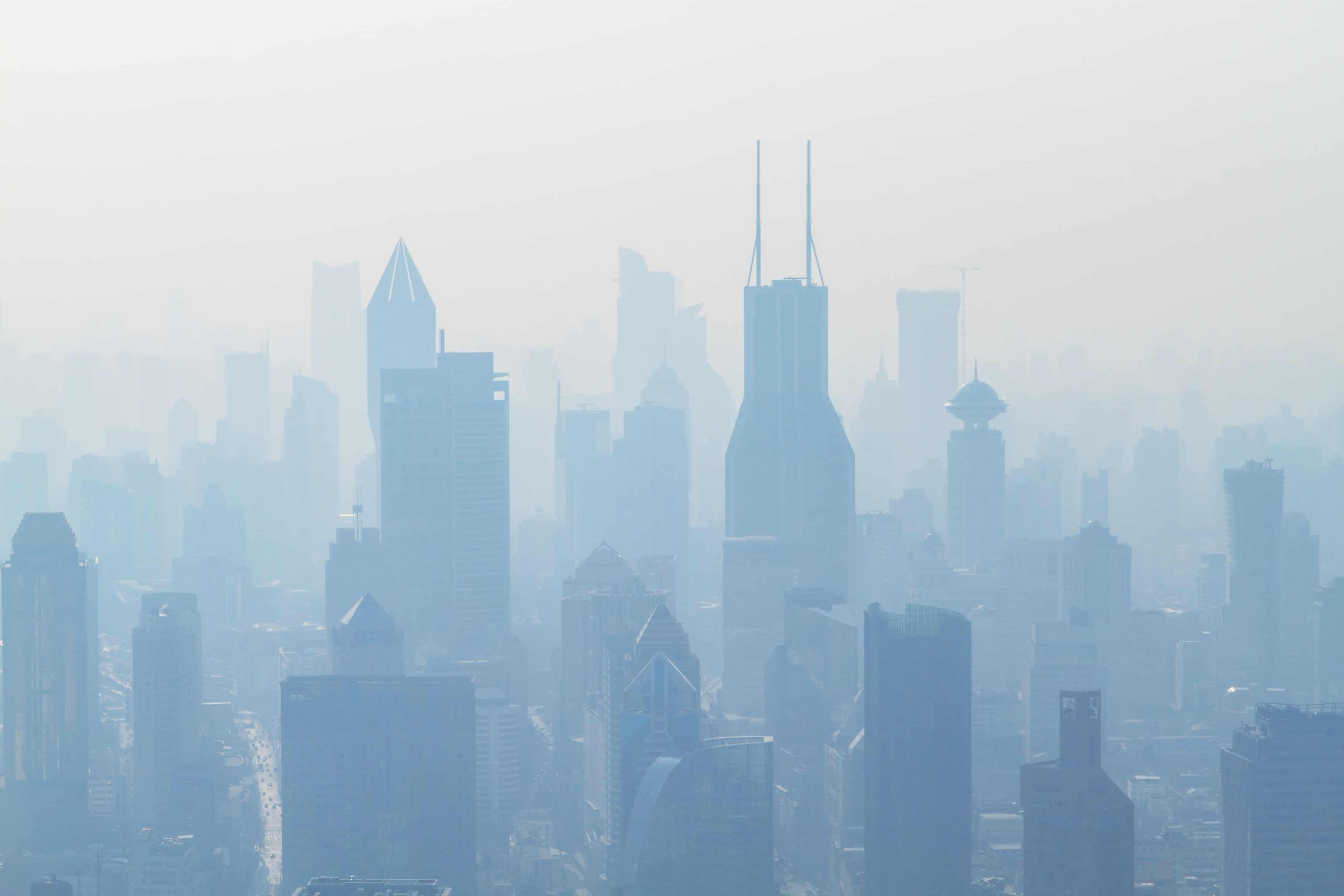 air pollution causing us to become dumb