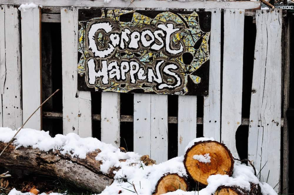 best compost bins for a zero waste kitchen