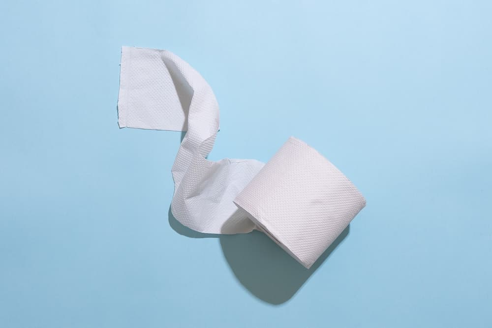 Sustainable Toilet Paper Alternatives for your Zero Waste Bathroom
