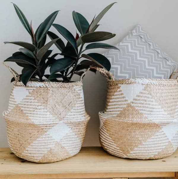 Gorgeous Baskets as Planters for your Indoor Garden
