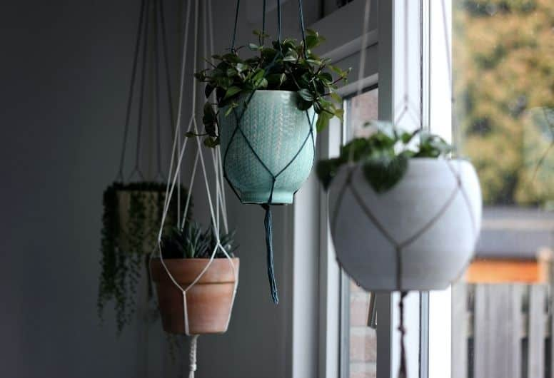 hanging baskets and pots are a good way to grow upwards