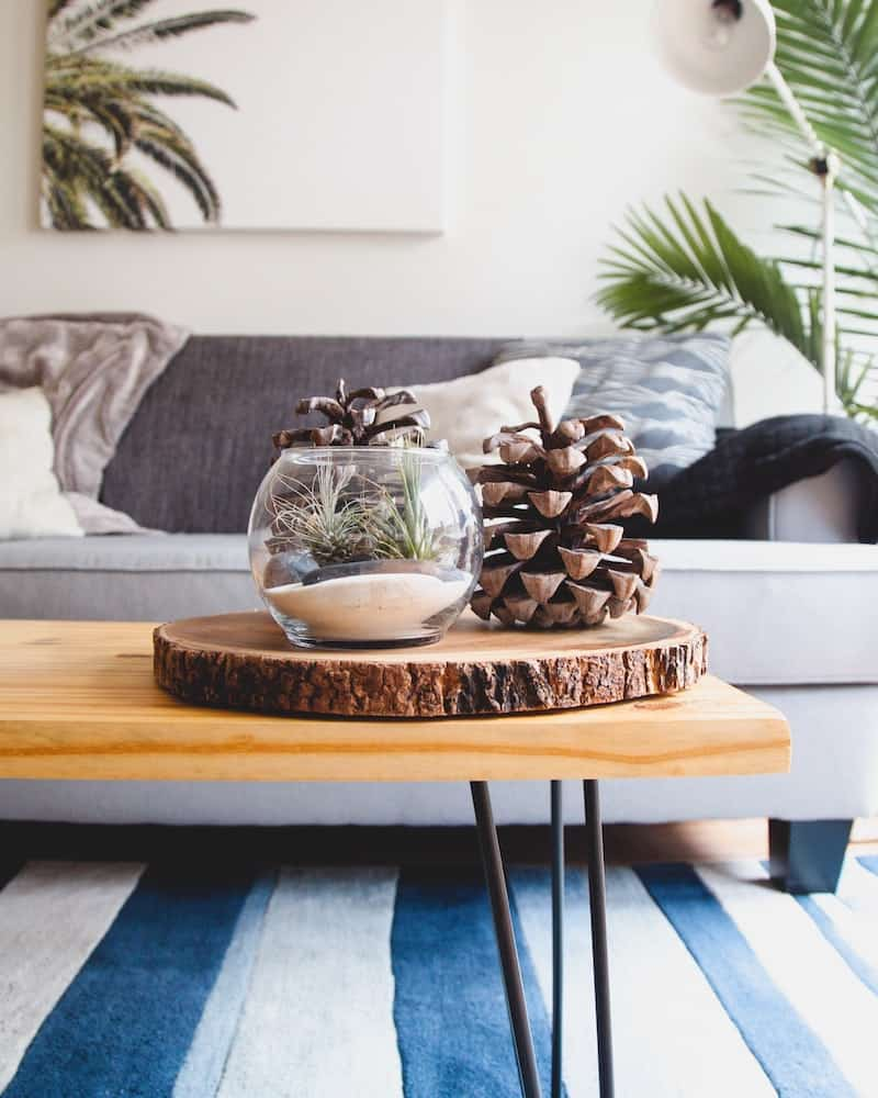 sustainable home decor ideas need not be difficult