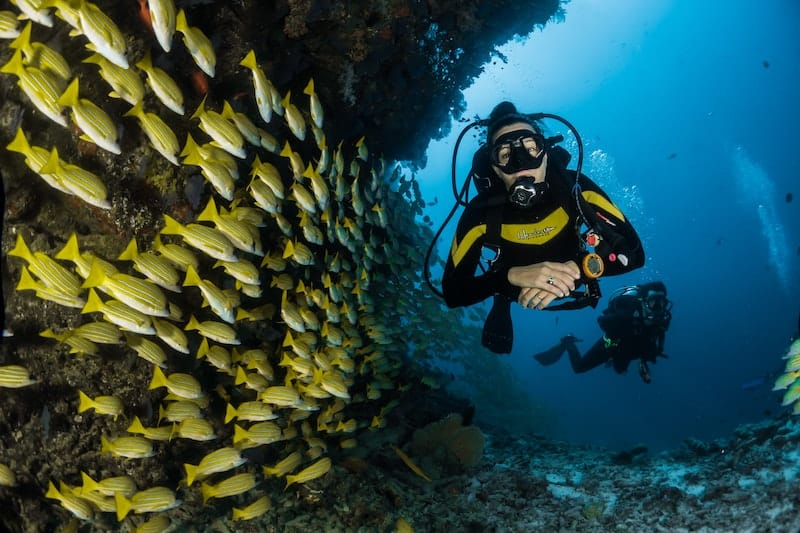scuba diver in mauritius - inspirational earth heroes